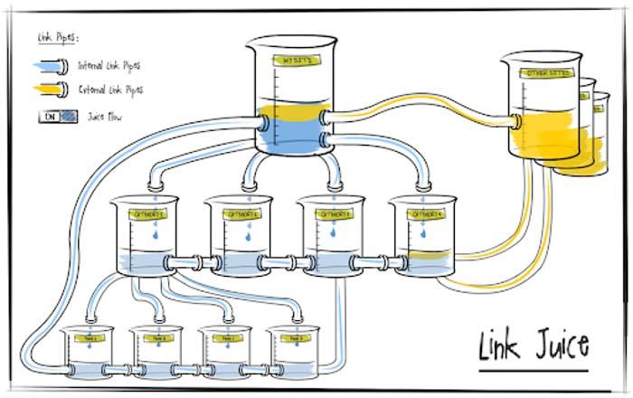 cấu trúc link