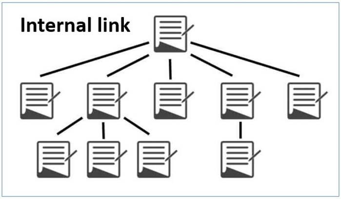 internal links là gì