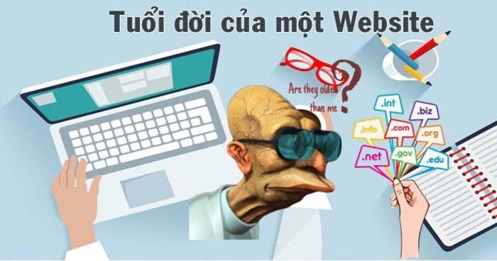 tuổi đời website
