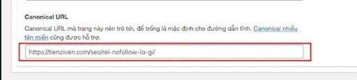 thiet lap URL chuan